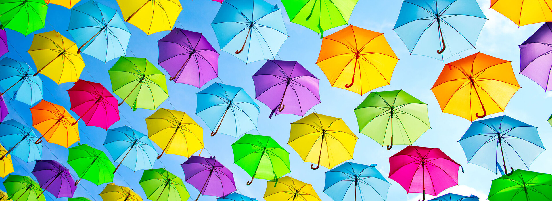 Do You Have an Umbrella Policy?